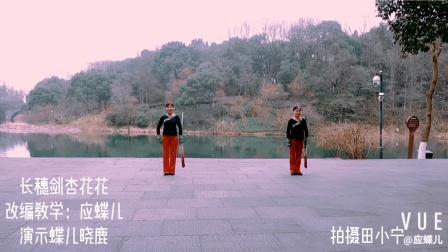 长穗剑—杏花花(正)二人