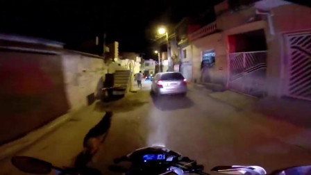 骑警猛追小车最后逼入死胡同