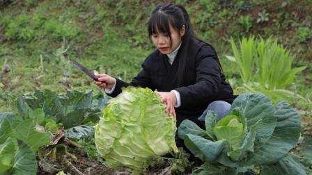 四川人最爱吃的猪油拌饭,你会了吗