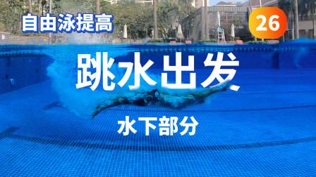 【自由泳提高】26.跳水出发(水下部分) 梦觉教游泳