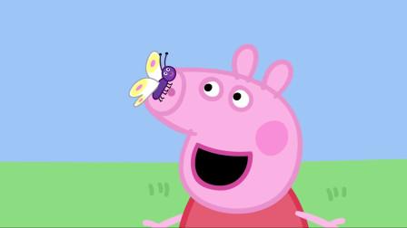 小猪佩奇 全集 青蛙、虫子和蝴蝶