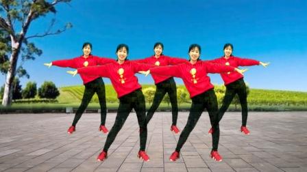 广场舞教学《河北加油石家庄加油》跳出正能量,加油