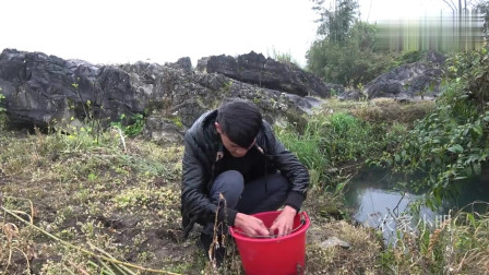 农村小明 :农村深潭鱼真多,小伙放夜钓,钓竿直接被拖入水中,收获七八斤鱼