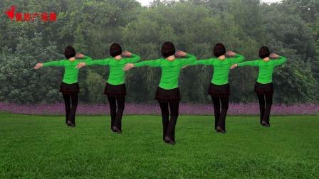 广场舞《花蝴蝶飞》零基础步子舞,好学好看背面演示