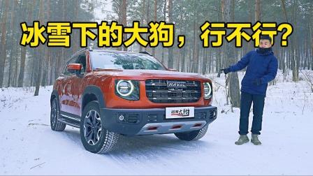 去撒野!冰雪体验大狗2.0T四驱版