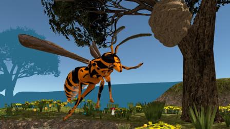 蚊子模拟器:从蚊子进化到大黄蜂,还能挑战大狼蛛