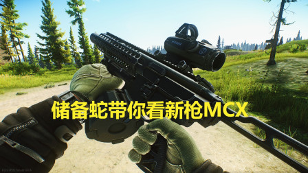 逃离塔科夫,点300新枪MCX,近战利器