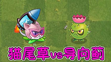 植物大战僵尸:猫尾草VS导向蓟,谁会更强呢?
