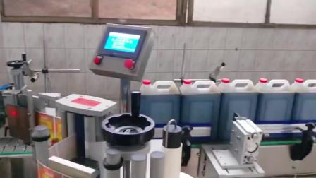 酱油厂五升扁桶自动贴标