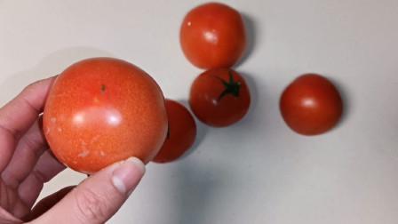 西红柿记得买母的,沙甜多汁超好吃,头部一眼就能看出