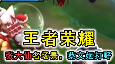 王者荣耀:大仙使用蔡文姬打野,遭到队友狂喷,结局却成为名场面