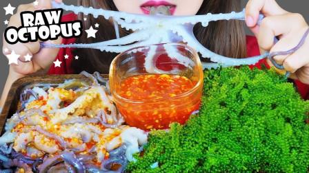 【咀嚼音】吃生章鱼、海葡萄,辣酱