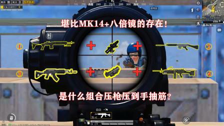 明月:堪比妹控+八倍镜的威力!是什么组合压枪压到手抽筋?