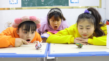 柚柚和同学比赛小动物赛跑,胖芸儿当裁判,谁会取得胜利