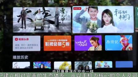 彩电2020:小米电视蝉联第一背后,多品牌叫苦连连