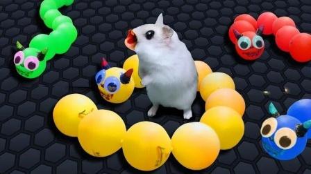 小仓鼠大闯关:小老鼠对战贪吃蛇!
