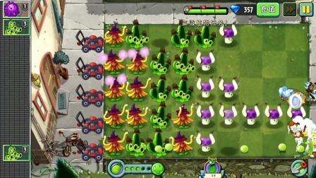 植物大战僵尸2第1096期:金缕梅女巫植物挑战第4-6关