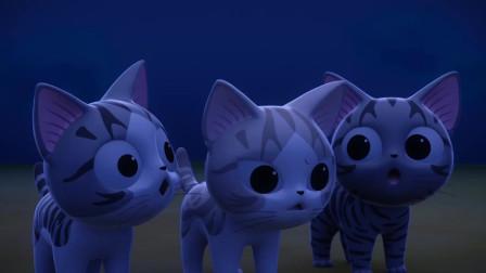《甜甜私房猫》小猫咪来到哪里了呢