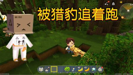 迷你世界;新版本,人王雨林被豹子追,直接跑树上