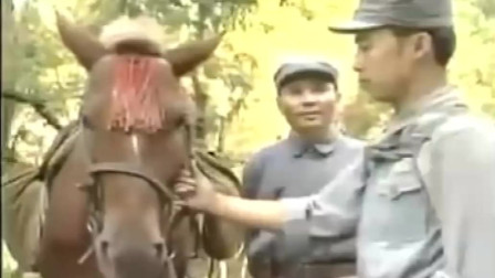 影视:邓政委把马让出来驮炮,却发现一个营长行军还找挑夫,惨了
