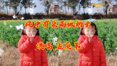 《风中有朵雨做的云》-演唱:孟庭苇-大理巍山