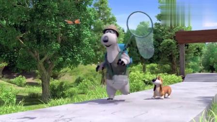 贝肯熊:贝肯带小狗狗去捉蝴蝶,一路汪汪叫,贝肯能捉到蝴蝶吗?