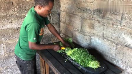 老外:非洲工人炒中国白菜,方法大有不同,你看后想吃吗?
