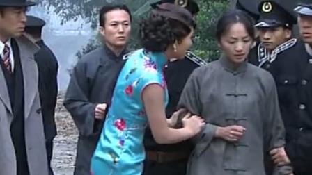 纸醉金迷:袁园被警察带走,佩芝只关心自己孩子,终是袁园错付!