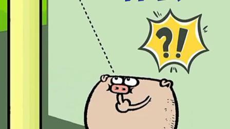 搞笑动画:好奇害死猪?