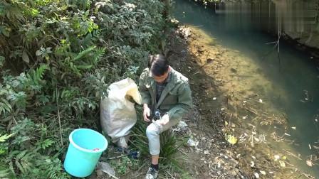 农村小莫:小莫偏僻深坑钓鱼,第一次遇到这么饿的鱼群,下竿后连连爆十几竿