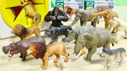 恐龙玩具儿童动画,霸王龙、狮子、大象等动物玩具开箱试玩!