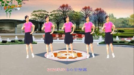 梦中的流星广场舞《下辈子不一定遇见》舞蹈:凤梅