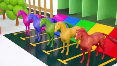 彩色小马自己的彩色房子中