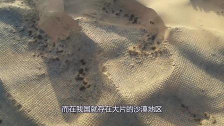内蒙古发生了奇迹,沙漠引入黄河水,变化出乎意料!