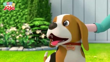 超级宝贝:狗狗好聪明,会拼自己的名字