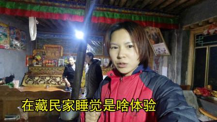 在藏民家睡觉是啥体验?睡长椅用牛粪烤火,藏族养生方法很特别