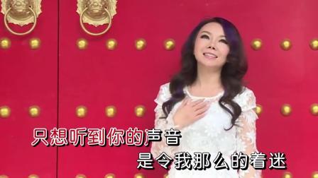 陈美惠-《想着你亲爱的》DJ何鹏版