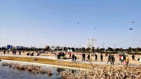绵阳市小枧城市生态湿地公园