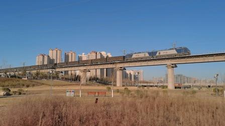 20210117_090235 西康铁路 西局安段HXD2-1517牵引敞车通过灞桥湿地公园