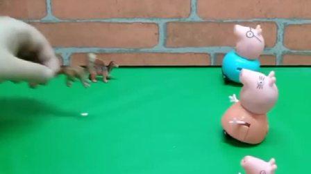 小猪一家发恐龙了