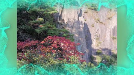 美丽中国:一路好风景之黄山(B)