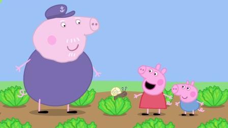小猪佩奇:小蜗牛真狂妄,在猪爷爷的眼前吃蔬菜,你不想活了吧