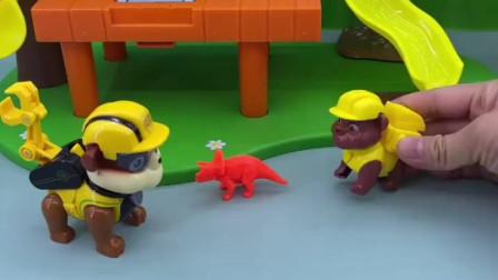 小力捡了一只小虫子,非要留着玩,没想到这是小恐龙啊!