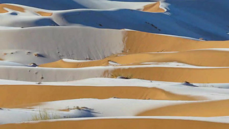 降温至零下!冰雪覆盖撒哈拉沙漠,全球最热地区下雪了