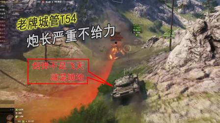 坦克世界:老牌城管的炮弹飞天锄地,你们上的哪款炮?