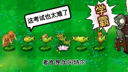 植物大战僵尸:这考试也太难了