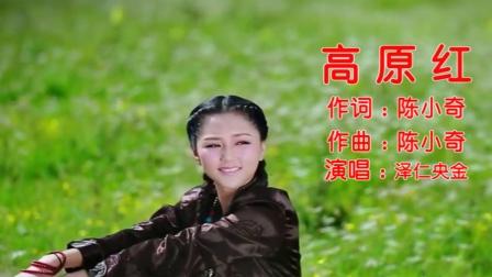 泽仁央金-《高原红》,滚滚红尘岁月匆,不忘当年高原红!