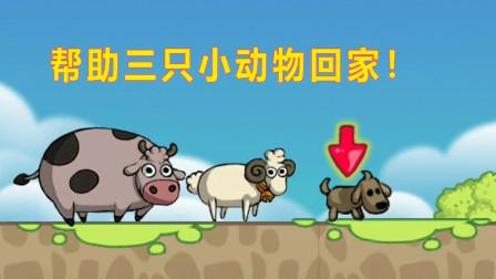 萌萌宠物探险回家:三个可爱的小动物齐心协力,克服困难只为回家!