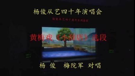 黄梅戏表演艺术家从艺四十周年演唱会与梅院军演唱《小辞店》选段