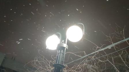 2021年的第一场雪!夜幕笼罩,北京小雪悄然而至地面开始见白